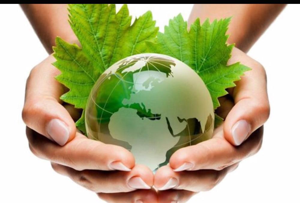 环保人人有责