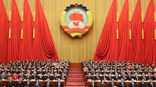 """""""中国式民主""""展现全新活力"""