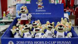 俄罗斯世界杯将开幕 中使馆提醒球迷谨防假球票