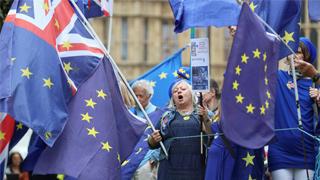民调:近七成英国人不满政府在脱欧谈判中的表现