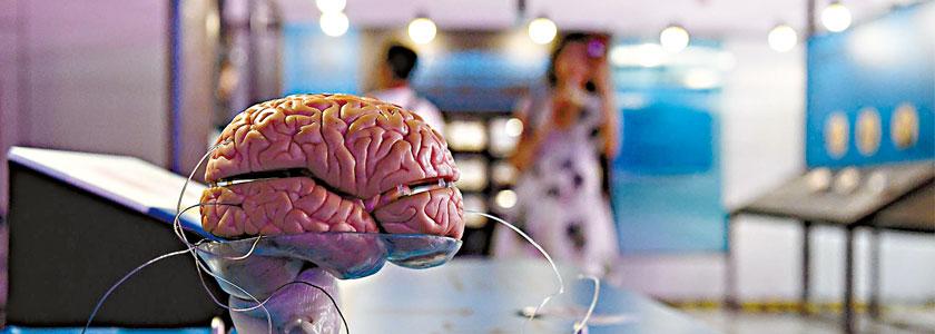 腦生瘤或不須完全切除
