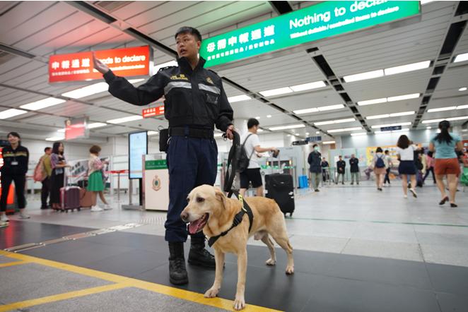急速赛车8码必中:香港海�P暑期加���谭�_呼�n青少年勿以身�法