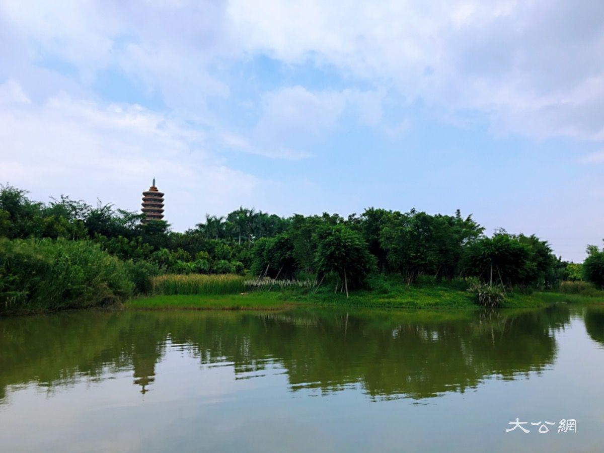珠三角10月建成国家森林城市群_构建大湾区生态屏障