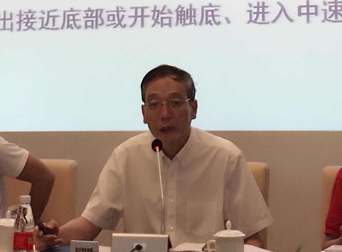 刘世锦:人民币仍相对强势