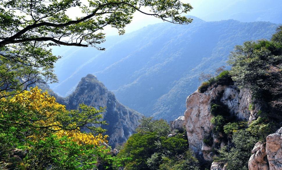 嵩山景区邀游客少林寻找最美 孝心石