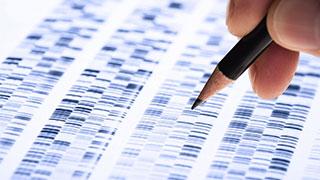 中国人群基因遗传特征首揭秘:南方人免疫力更强