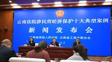 云南高院发布涉民营经济保护典型案例