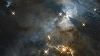 星云中現巨大蝙蝠影子 NASA:它比太陽系大200倍