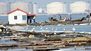 福建泉州石化泄漏多日 民众盼出台水质及海产品控数据
