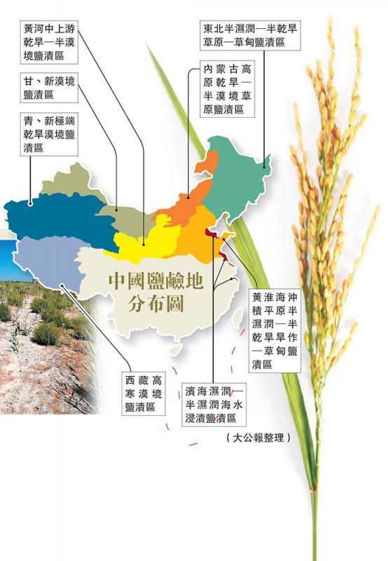 中国地�_中国盐碱地分布图