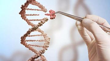 基因编辑婴儿面临多重质疑 学术界密集回应