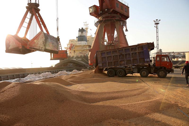 今年8月,江苏南通一处港口正在处理进口的大豆/资料图片