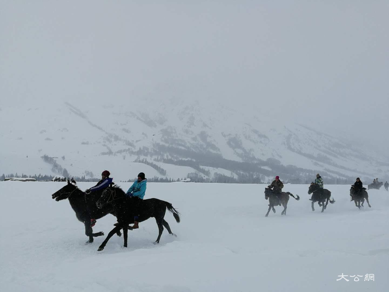 喀納斯冰雪風情旅遊節暨潑雪狂歡節現場雪地賽馬 應江洪 攝