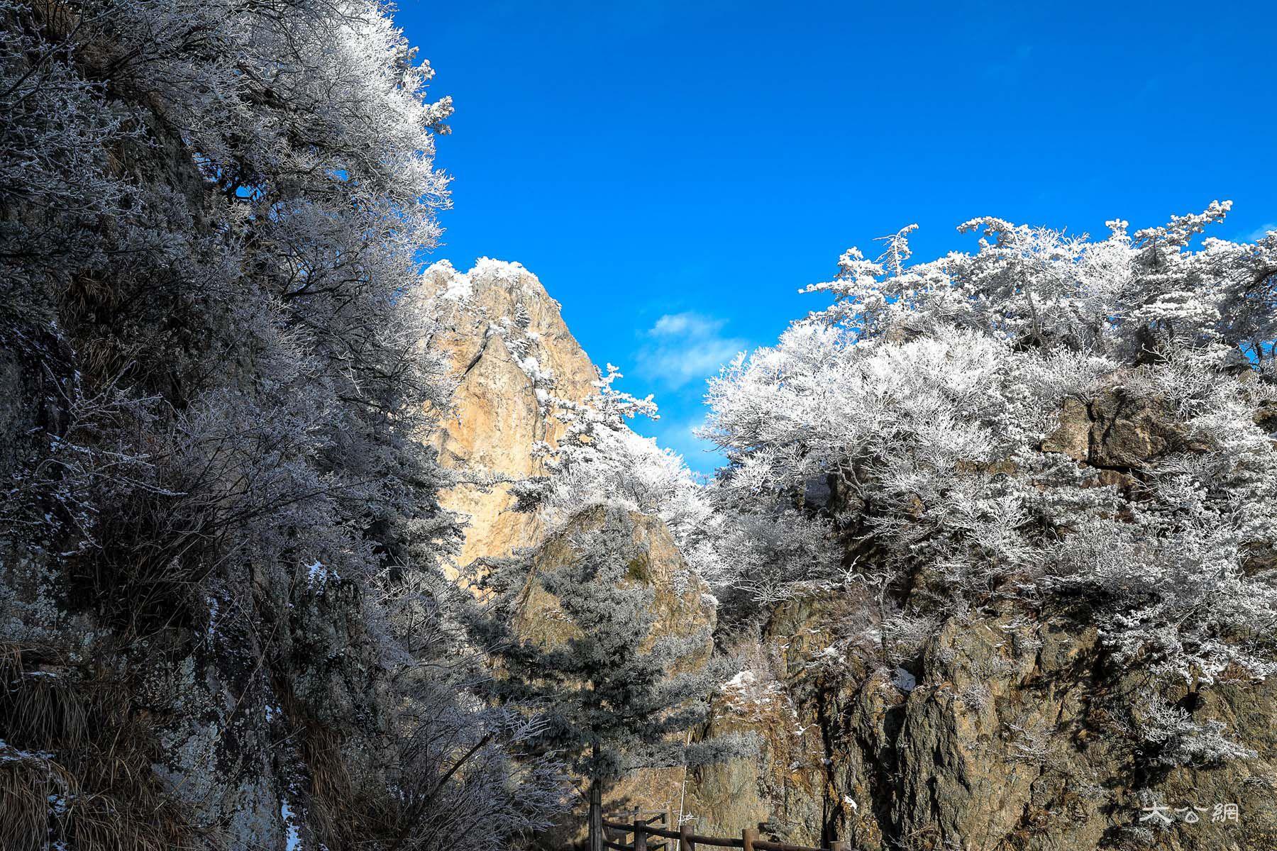 冬日老君山如仙境讓人流連忘返  位於河南省洛陽市欒川縣城東南的老君山,是中國北方道教信眾拜謁聖地,中原山水文化傑出代表。冬季的老君山,是