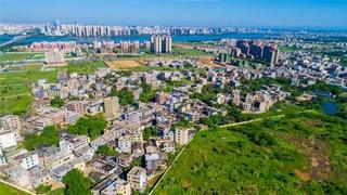 中国将尽快提出自贸港政策制度体系 加快教育医疗等开放