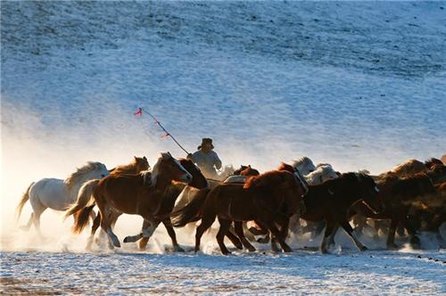 壯觀!中國內蒙古草原「雪原奔馬」