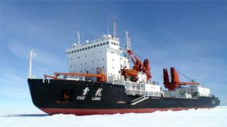 """""""雪龍""""船在南極碰撞冰山 目前人船安全"""