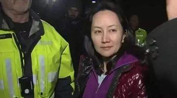 """加拿大驻华大使""""倒戈"""":孟晚舟有充分理由反对引渡"""