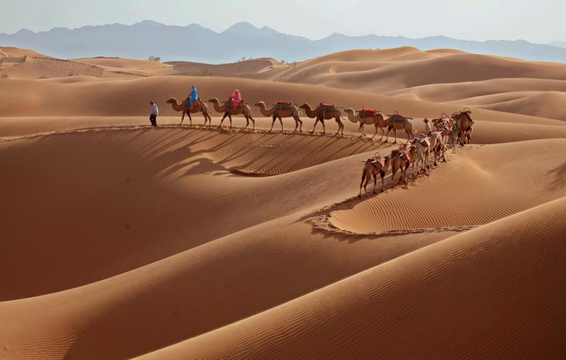 夜進騰格里沙漠