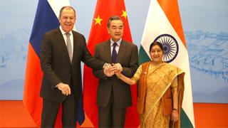 中俄印外長會晤達成八點重要共識