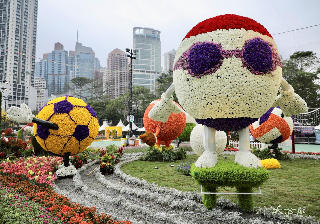 香港花卉展明開幕 42萬株花齊盛放