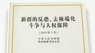 白皮书:新疆依法设立教培中心 把预防性反恐放在第一位