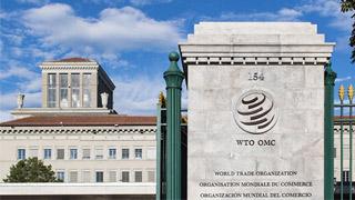 WTO前总干事:需准备AB计划应对潜在风险
