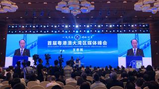 """王志民:媒体应写好大湾区这篇""""世界级大文章"""""""