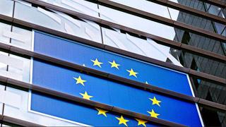 欧洲议会选举初步结果:绿党与极右势力支持率飙升