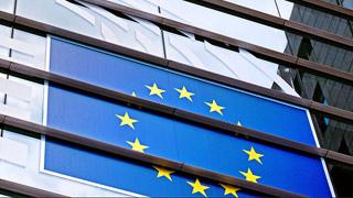 """欧洲议会选举""""余震""""波及多国"""