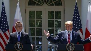 2020总统连任竞选 ?特朗普:乐见外国提供对手黑材料