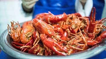 埃及人见到小龙虾竟不知所措 中国人支招:煎炒烹炸煮炖焖