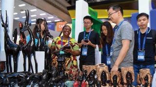 第一屆中國-非洲經貿博覽會開幕 搭建合作新平臺