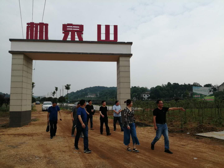 湘潭市开展2019年文旅品牌创建调研
