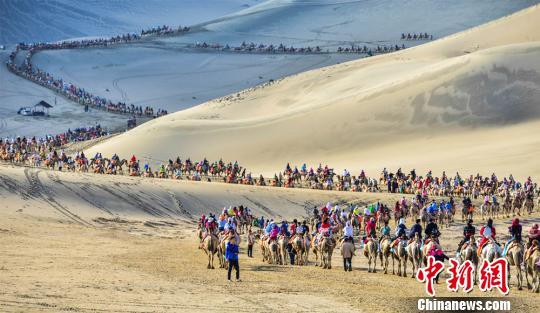 甘肅敦煌大漠駝隊蜿蜒2公里宛若「長龍」