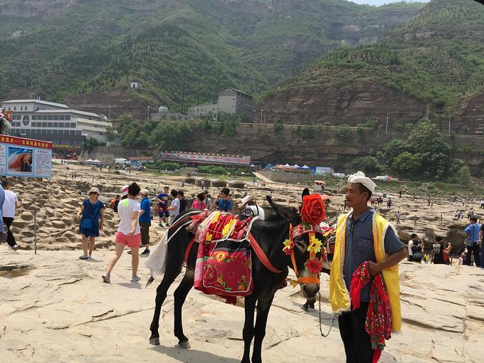 陝甘青寧四省區將共同打造旅遊線路創建旅遊品牌