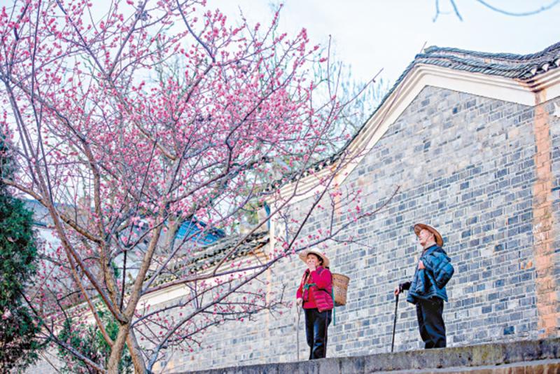 ?生活.電影.詩意  ─毛尖陸慶屹對談《四個春天》\大公報記者 湯艾加