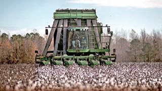 ?中美贸战|失中国市场 美农恐损失数十亿美元