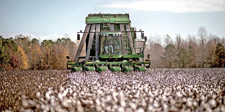 ?中美貿戰|失中國市場 美農恐損失數十億美元