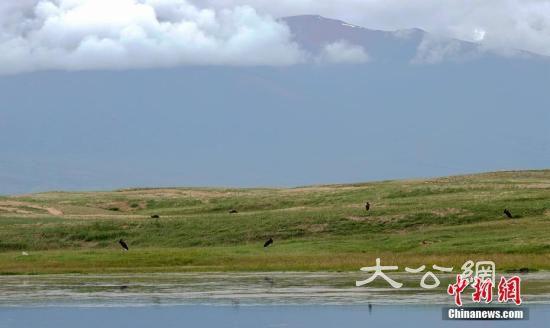 新疆東天山濕地生態游 帶火「農家樂」