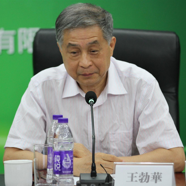 王勃华:光伏产业大致经历了三个发展阶段