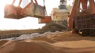 中美副部级磋商 聚焦农产品采购