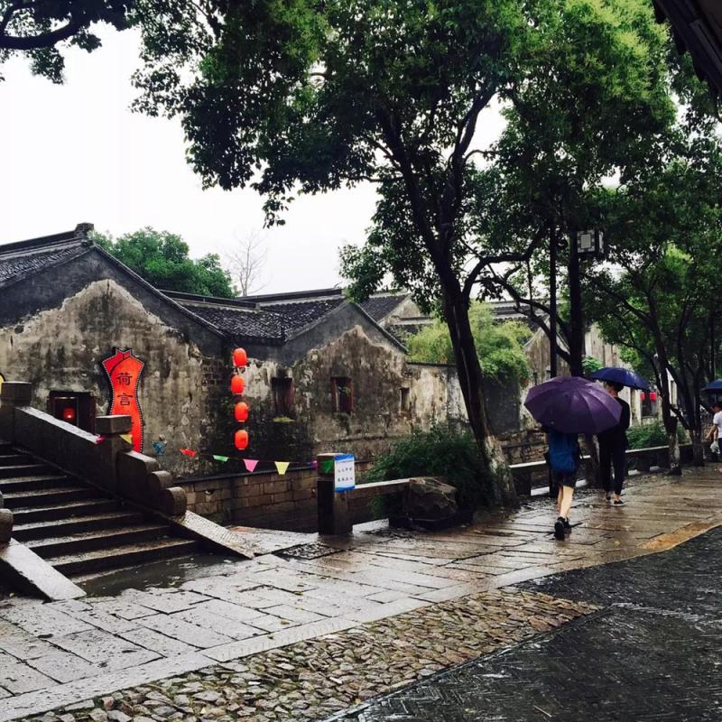 ?天南地北/雨巷/陆小鹿