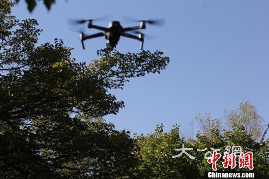 6月7日,無人機在哈密市伊吾縣蝴蝶谷拍攝。 陶拴科 攝