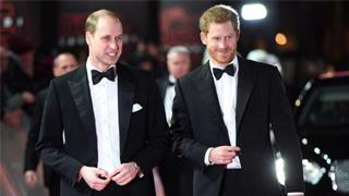 英国?哈里王子首认与兄长威廉疏远