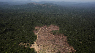 西班牙表示將接替智利舉辦聯合國氣候大會