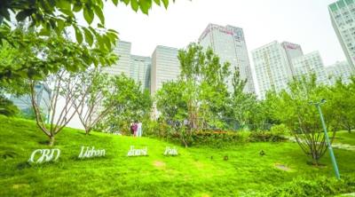 CBD建起首个城市森林公园