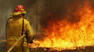 ?澳洲山火蔓延 新南威尔士紧急状态