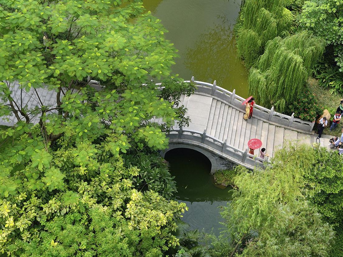 林海涛《城中绿洲》