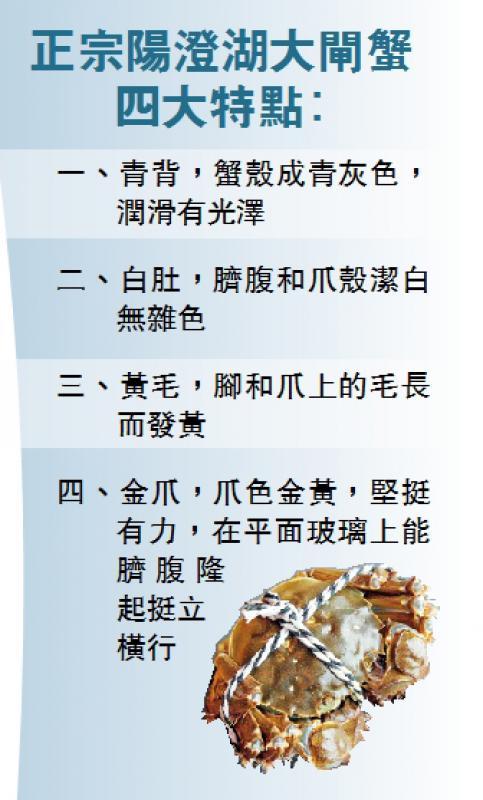 大闸蟹之乡 欢迎香港客人